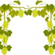 Green grapes and leaves frame — Stock Vector