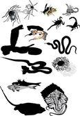 Set di velenoso animale isolato su sfondo bianco — Vettoriale Stock