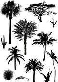 棕榈剪影集合 — 图库矢量图片