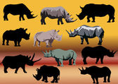 Set of eleven rhinoceroses — Stock Vector