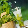 Stock Photo: Fresh water with mint