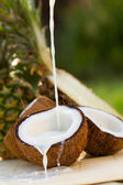 Pinacolada cocktail — Stock Photo