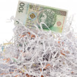 Stock Photo: One hundred banknote and shred