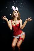 Sexy bunny girl — Stock Photo