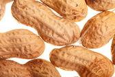 Peanuts background — Stock Photo
