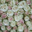 Floral arrangement made off pink roses in different shades — Stock Photo
