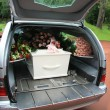 Foto Stock: White coffin in grey hearse