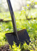Close up of garden shovel — Stock Photo
