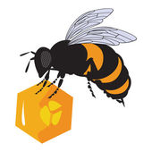 The vector bees and honeycomb with honey — Stock Vector