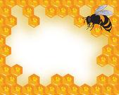 Den vektor bin och honeycomb med honung — Stockvektor