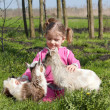 Two little goats pets and child — Stock Photo #5413347