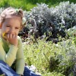 Little girl sits in grass and thinks — Stock Photo