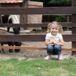 Little girl on the farm - Stock Photo