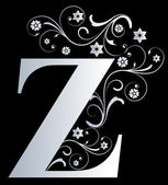 Capital letter Z — Stock Photo