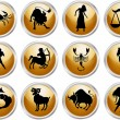 Stock Vector: Set of zodiac signs