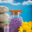 Spa minerals - lavender bath salt — Stock Photo