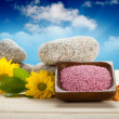 Bath salt, flowers and stones — Stock Photo