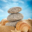 Beach - Stones and shells on sand — Stock Photo #6495356