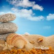 Vacation - Summer beach; stones and shells — Stock Photo