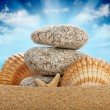 Stones and shells — Stock Photo