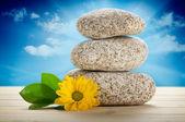 Spa 静物-石头和花 — 图库照片