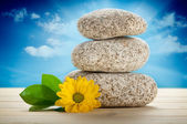 Spa stilleven - stenen en bloem — Stockfoto