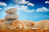 Vacation - Summer beach; stones and shells — Stock Photo
