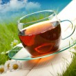 Tea cup - Stock Photo