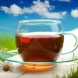 Stock Photo: Tea cup