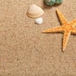 Shells and starfish — Stock Photo #6511771