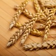 Wheats — Stock Photo