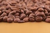 Coffee beans macro — Stock Photo