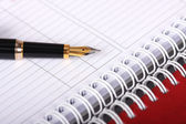 Spiral notebook and fountain pen — Stock Photo