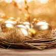 Golden nest eggs — Stock Photo