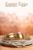 Påsk ägg - gyllene ägg i boet — Stockfoto