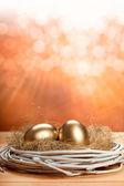 золотые яйца — Стоковое фото