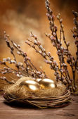 Easter eggs in the nest — Foto Stock