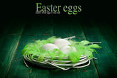 Easter eggs in the nest and green plumes — Stock Photo