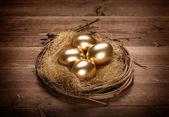 Gouden eieren in het nest — Stockfoto