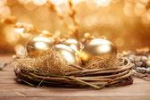 Golden nest eggs — Stock Photo