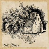 Old house — Stock Vector