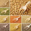 Set of dried beans — Stock Photo