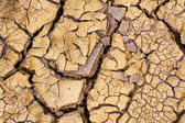 Global warming - parched earth. Drought. — 图库照片