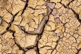 Réchauffement de la planète - desséchée terre. sécheresse. — Photo