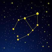 Constellation Vela — Stock Vector