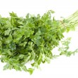 Bunch parsley — Stock Photo