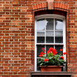 Window boxes — Stock Photo #6214873