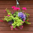 Royalty-Free Stock Photo: Hanging basket of flowers with wooden background