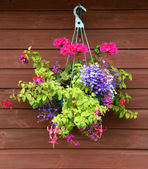 Hanging basket of flowers with wooden background — Stock Photo