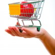Cart from the supermarket — Stock Photo #6469046